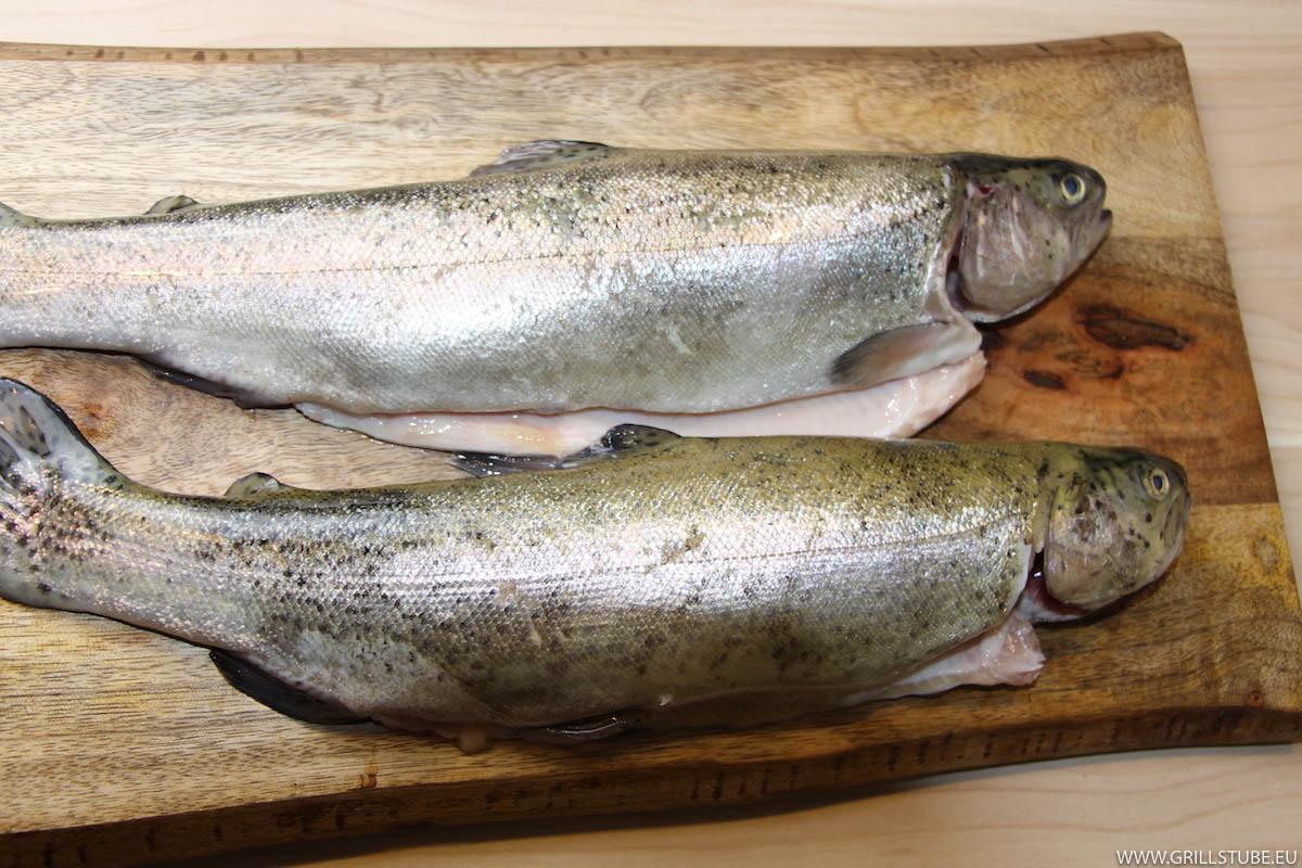 Die frischen Fische